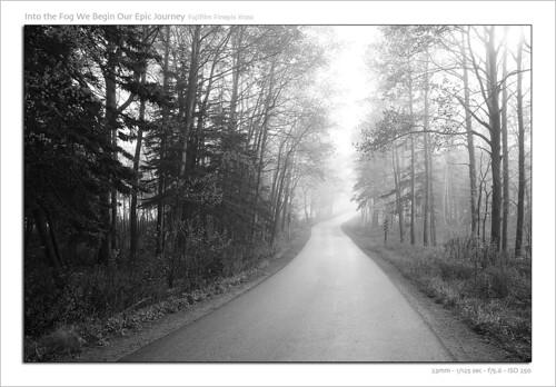 road blackandwhite mist canada tree fog landscape nationalpark spring fuji novascotia forrest outdoor fujifilm provincialpark capebretonhighlands capebretonisland x100