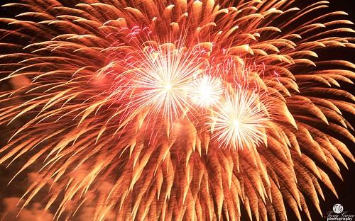 Fireworks in Riyadh