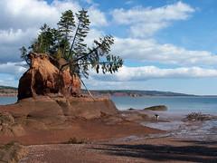 Nova Scotia: Lower Economy