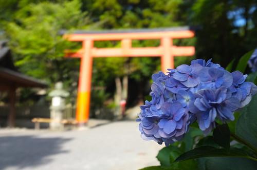 2012夏日大作戰 - 京都 - 吉田神社 (13)