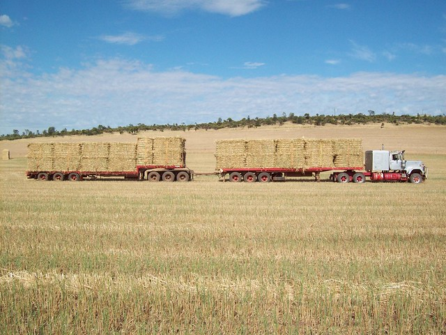 More hay with the Superliner.