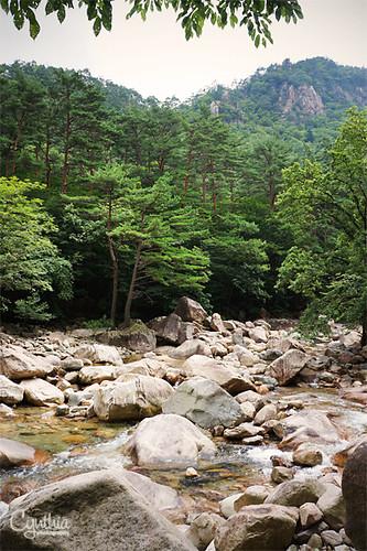 Sokcho - River 1