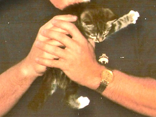 Me and Kitten Z (crop)