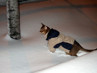 gunhee-snow2