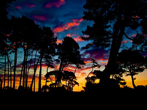 blue trees light sunset red newzealand sky color colour silhouette landscape rainbow painted papamoa flickrclickx adilmehmood