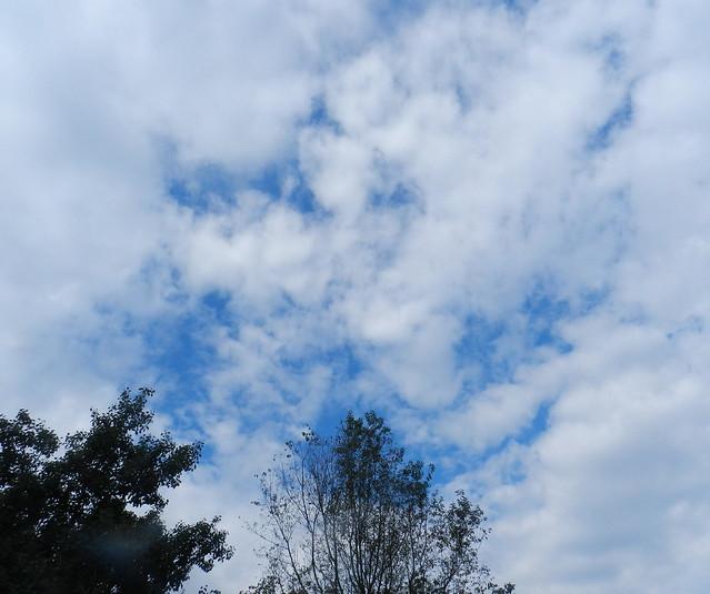 skywatfDSCN6330