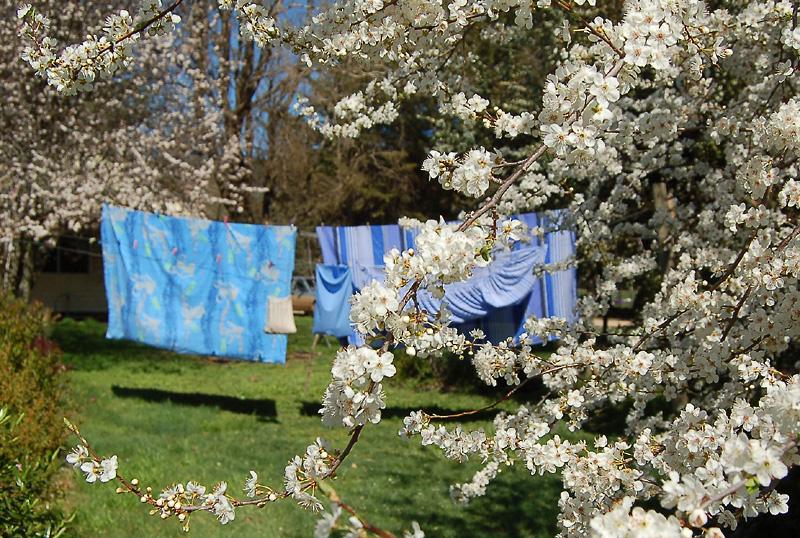 _laundry-4_