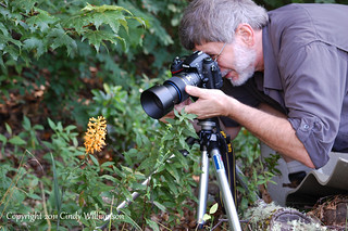 Gerry photographing Yellow Fringed Orchid by USWildflowers, on Flickr