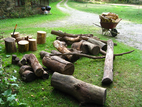 Hauled wood and chopped wood
