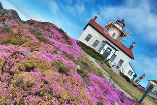 Battery Point Lighthouse.  Crescent City, CA.