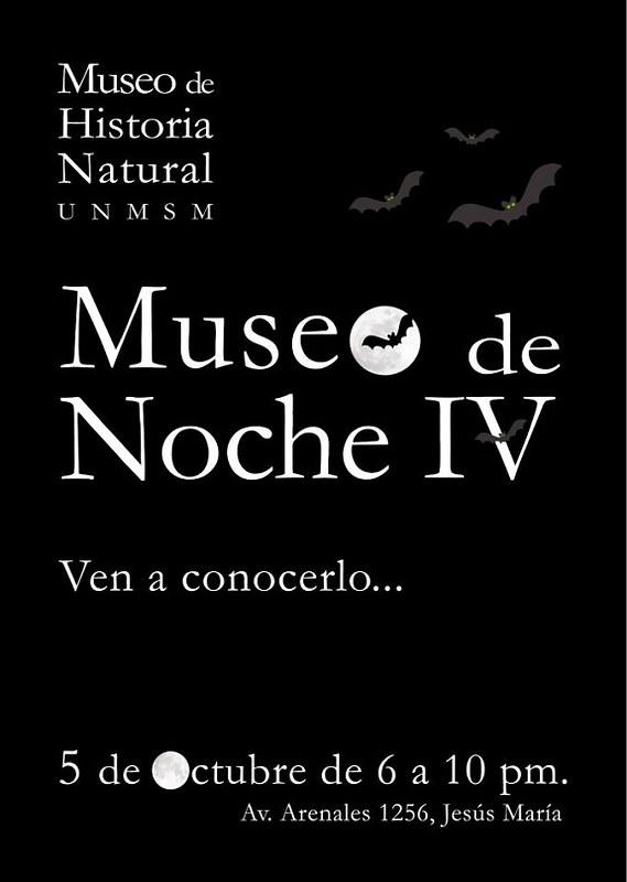 afiche-museo-de-noche-actual