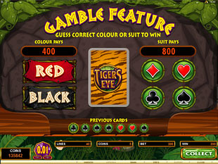 Tiger's Eye Gamble Feature