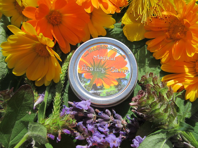 wooly mini magical healing salve