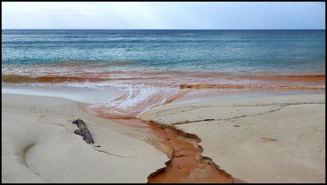 BLOOD FROM A WOUNDED EARTH RUNS INTO THE SEA