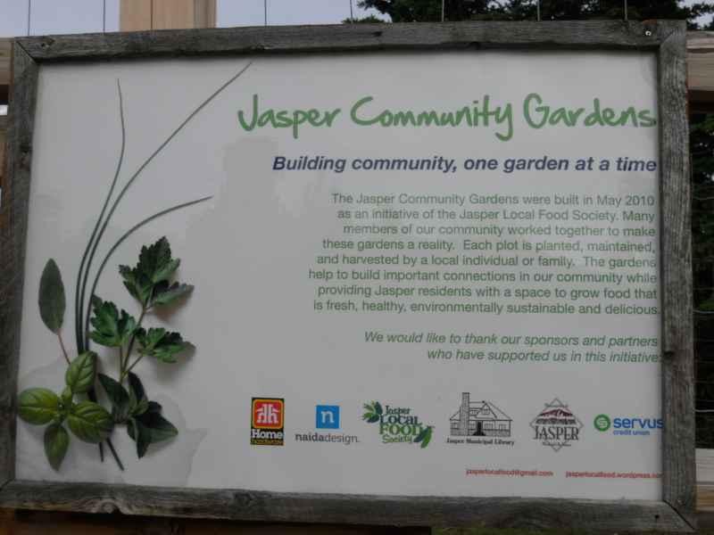 Jasper community garden Canada 1