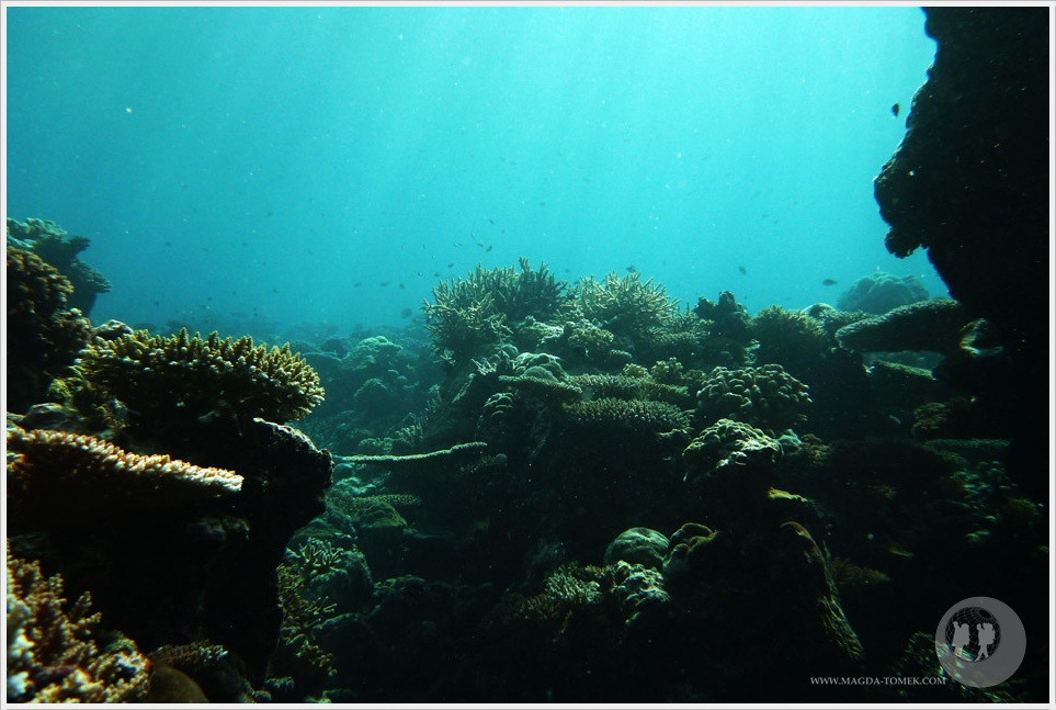 2012 07 23_Magda i Tomek Dookola Swiata_Fiji_P1040191