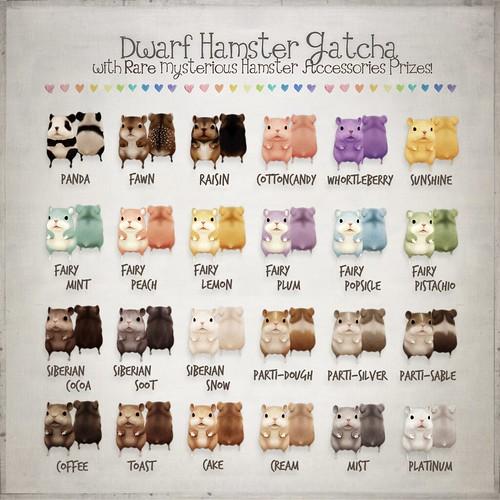 Dwarf Hamster Gacha Color Chart