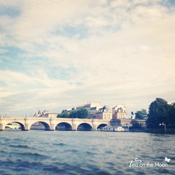 París instragram rio Sena puente