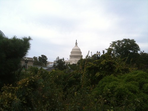 View of Capitol from Bartholdy Park