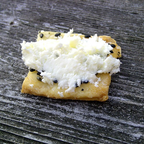 local cheese   homemade cracker