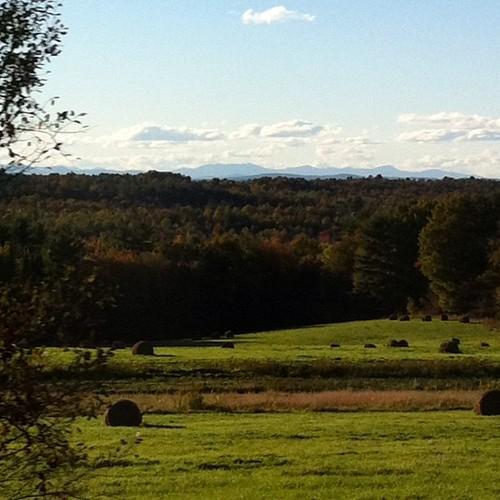 Maine forever #maine