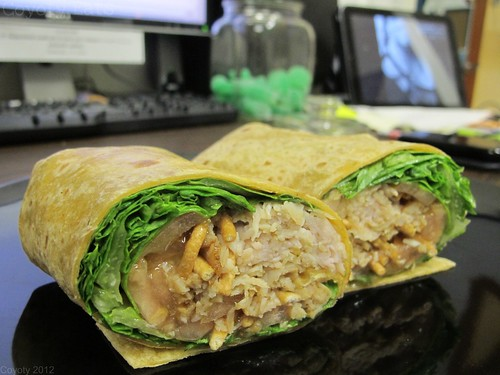 Asian turkey wrap by Coyoty