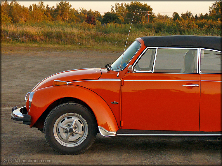 P1280369_VW_beetle