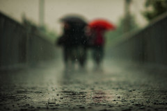 [Free Images] People, People - Behind, Umbrella, Rain ID:201210020400