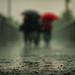 Red Umbrella by Jonathan Kos-Read