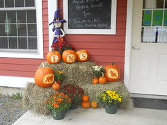 FallDoorDisplay by Lyme Nursery
