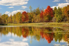 Brockway Lake - Autumn in Mecosta County, Michigan by Michigan Nut