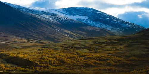 autumn fall dovre dovrefjell blåberget avsjøen falketind
