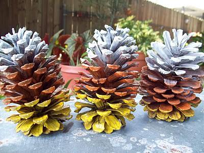 candycornpinecones