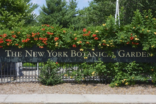 ny botanical gardens in the bronx