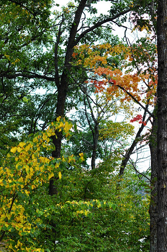 First Fall Colors of 2012