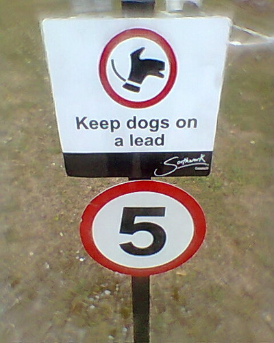 no dogs over 5mph