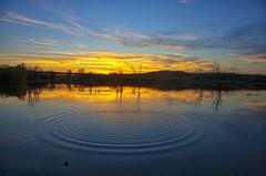 [フリー画像素材] 自然風景, 朝焼け・夕焼け, 河川・湖, 風景 - アメリカ合衆国, 波紋 ID:201210142000
