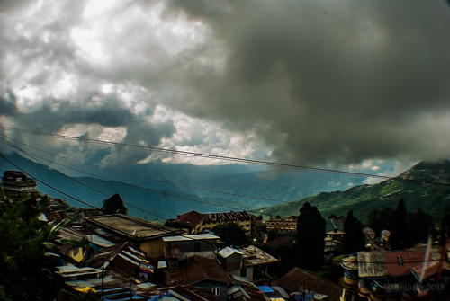 The Darjeeling City -II