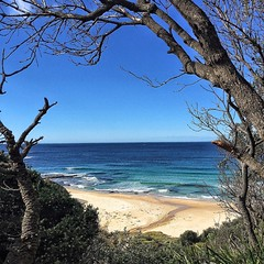 I think I could definitely live here... #newsouthwales #australia #nsw