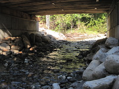 AMC Culvert Photo 5