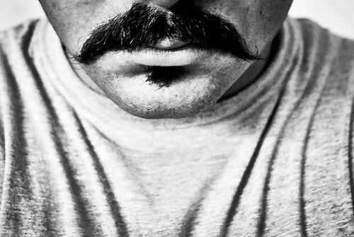 328/365. Series Anatomy: The Moustache.