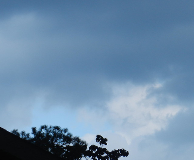 skywatfDSCN6137