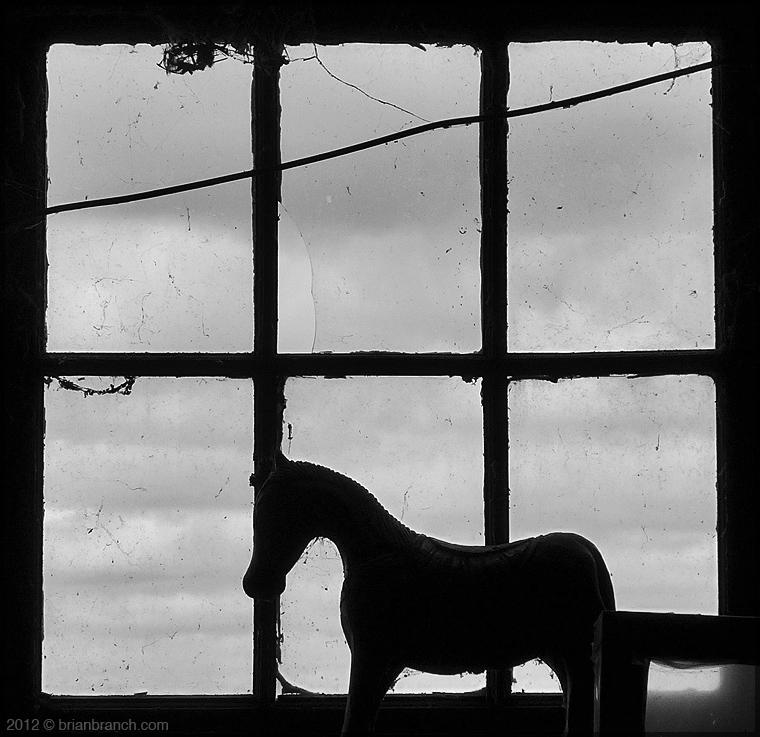 P1280251_farm_horse