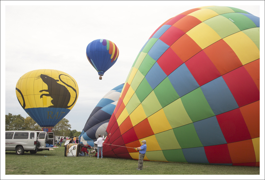 Forest Park Balloon Race 2102 13