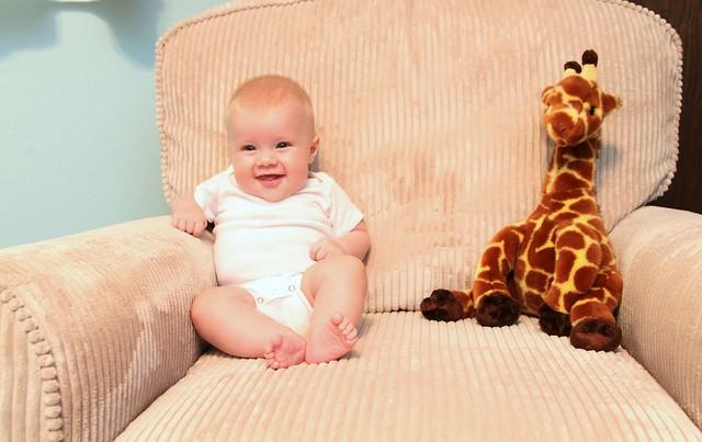 M vs Giraffe Week 15
