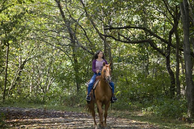 Explore New River Trail State Park on horseback!