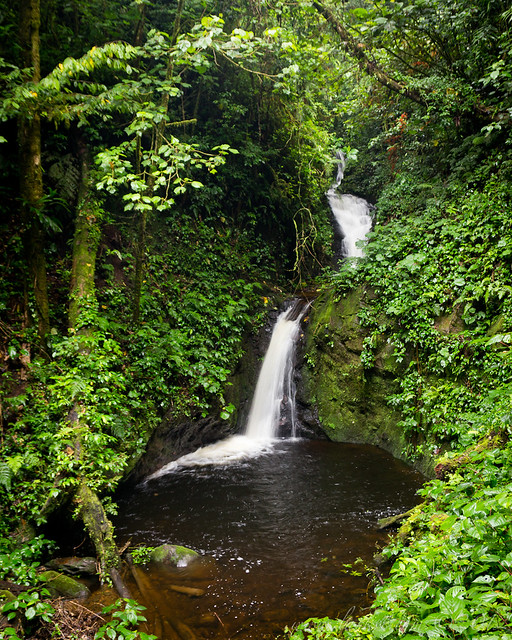 Waterfall, Monteverde Cloudforest Reserve, Costa Rica, 2012