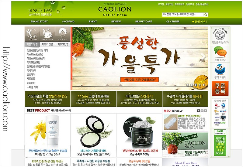 Caolion website