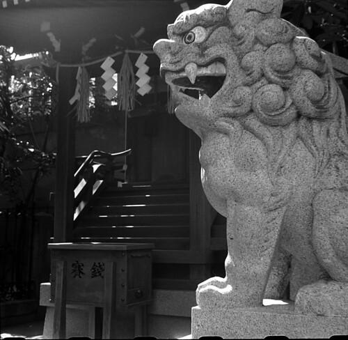 狛犬/stone guardian dog