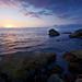 西海岸礁岩下生態豐富